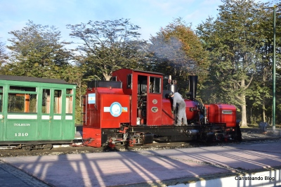 Visita al Parque Nacional y Tren del Fin del Mundo en Ushuaia